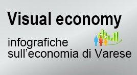 Visual economy: infografiche sull'economia di Varese